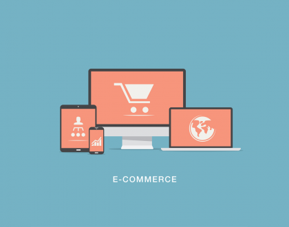 Before ordering and developing an e-commerce website